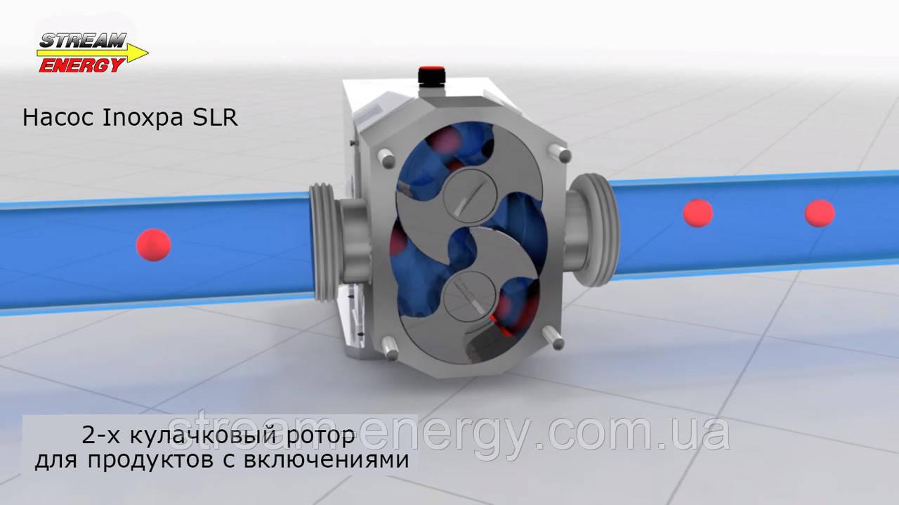 Кулачковый насос Inoxpa SLR 5-150