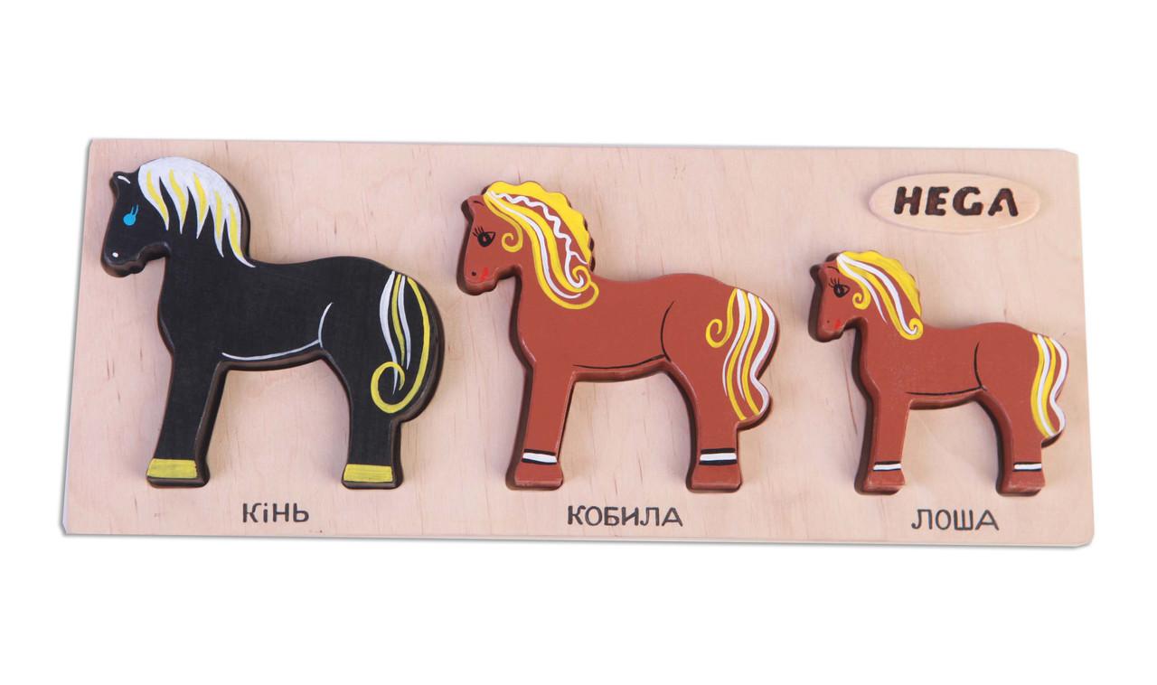 """Набір фігурок-вкладишів Hega """"Коні"""" (122)"""