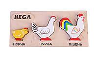 """Набір фігурок-вкладишів Hega """"Кури"""" (128), фото 1"""