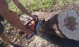 Спилить дерево. Выкорчевать пень. Скосить траву, фото 2