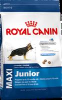 Royal Canin MAXI JUNIOR 15кг для щенков крупных размеров в возрасте до 15 месяцев