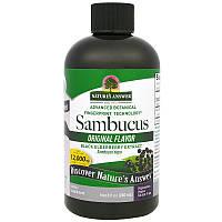 Nature's Answer, Sambucus,  Бузина, без вкуса, 12000 мг, (240 мл)
