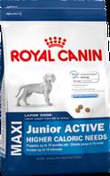 Royal Canin MAXI JUNIOR ACTIVE 15кг для щенков крупных размеров в возрасте до 15 месяцев