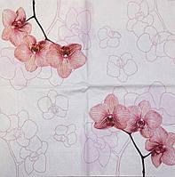Красивые салфетки для декупажа Орхидея 515