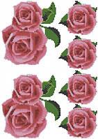 Розовые розы (счетный крест, бисер)