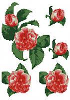 Садовая роза (счетный крест, бисер)