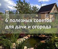 6 полезных советов для дачи и огорода