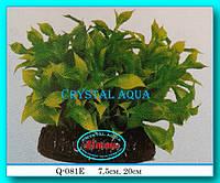 Растение Атман Q-081E, 7.5см