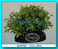 Растение Атман Q-087E1, 20см