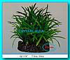 Растение Атман Q-113C, 20см