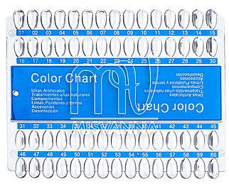 Палитра для гель лаков Color Chart, 60 образцов прозрачная
