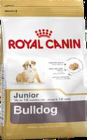 Royal Canin BULLDOG JUNIOR 12кг корм для щенков породы английский бульдог в возрасте до 12 месяцев.