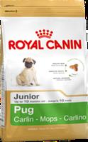 Royal Canin PUG JUNIOR 0,5кг корм специально для щенков породы мопс в возрасте до 10 месяцев