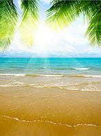 Фотообои пальмы и песок