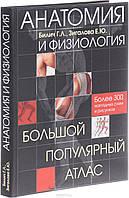 Анатомия и физиология Билич Г. Л., Зигалова Е. Ю.