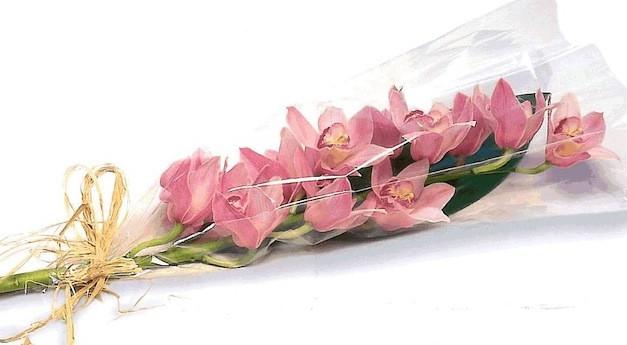 Доставка цветов ветка орхидеи оберег в подарок мужчине своими руками