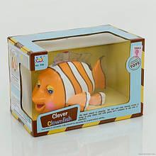 Рыбка Немо Clever Clownfish