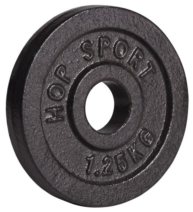 Диск (блин) металлический, вес - 1,25 кг