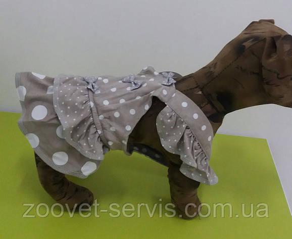 СарафанГорошек для собак, фото 2