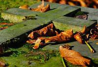 Как правильно ухаживать за памятниками и надгробиями…