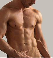 Мужской член – голые факты о размерах и применении