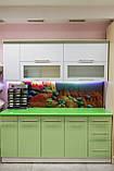 Кухни на заказ недорого. дизайн БЕСПЛАТНО fasoff, фото 2