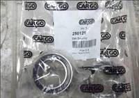 Подшипник компрессора Амулет Amulet Cargo 250129