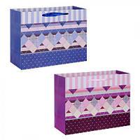 """(Цена за 12шт) Пакет подарочный бумажный """"Country"""" 24.5х19х10см, 12 штук в упаковке, с ручками, пакет для подарка, картонный пакет сувенирный,"""