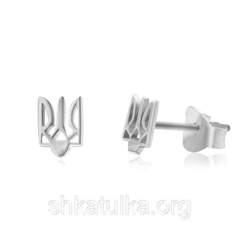 Серебряные серьги С2/240