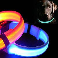 Ошейник для собак светящийся работает на батарейках