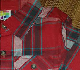 Сорочка в середню клітку бордо Healthtex (США) (Розмір 3Т)