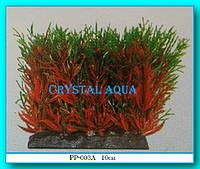 Растение Атман PP-003A, 10см