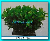 Растение Атман PP-015C, 10см