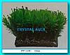 Растение Атман PP-110C, 10см