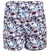 Детские шорты AquaWave Shark Kids Pants BLUE