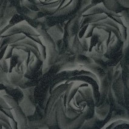 Роза чёрная ТМ-437. 437