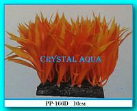 Растение Атман PP-166D, 10см