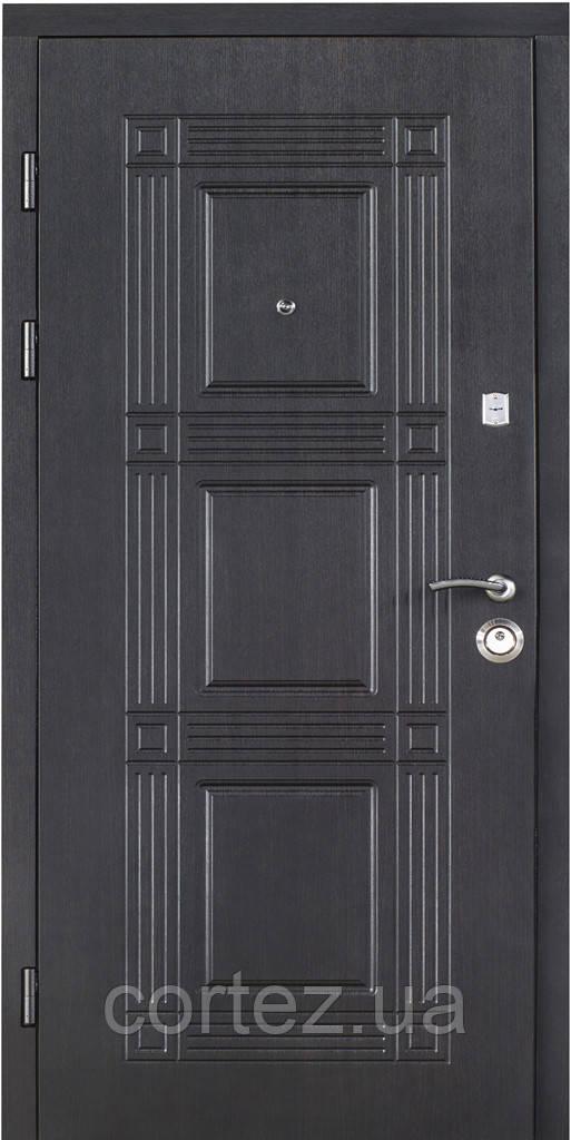 Двери входные стальные Премиум+313 полотно 95мм