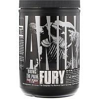 Universal Nutrition, Animal Fury, Fruit Punch, 491.4 g