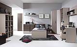 Шухлядка ліжка Нікко Gerbor, фото 3