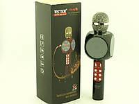 Karaoke Wster WS-1816 LED, L19 микрофон с караоке, черный