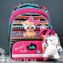 Школьный набор DeLune (рюкзак + сменка+пенал+брелок) 9-115, фото 3