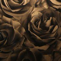 Роза бронзовая металлик HTY54W681