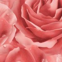 Роза розовая металлик HTY67A681
