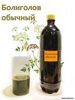Настойка болиголова (коричневая) 0.5л