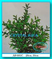 Растение Атман AS-081C, 30см