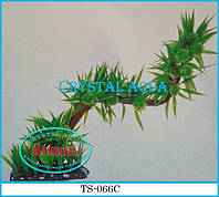 Растение Атман TS-066C