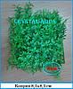 Растение Атман, коврик 9x9 см