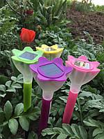 Весна- самое время украшать садовые владения!
