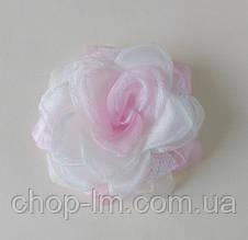 Резинка-бант (бело-розовый)